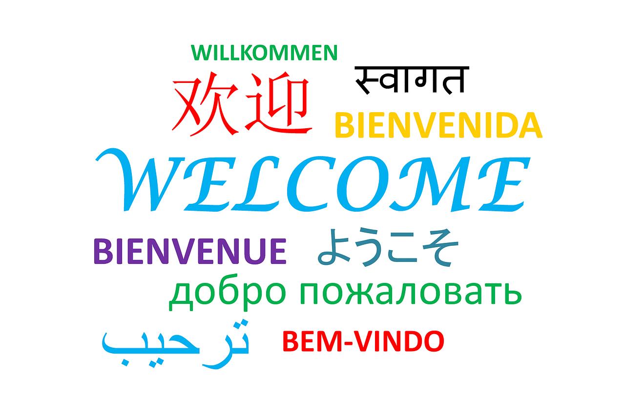 langues marché du travail